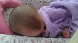 A little rose sleeping soundly 10.09.12